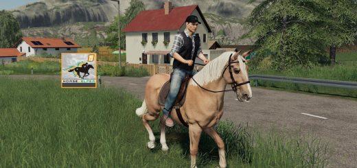 Pferdehelfer v 1.0