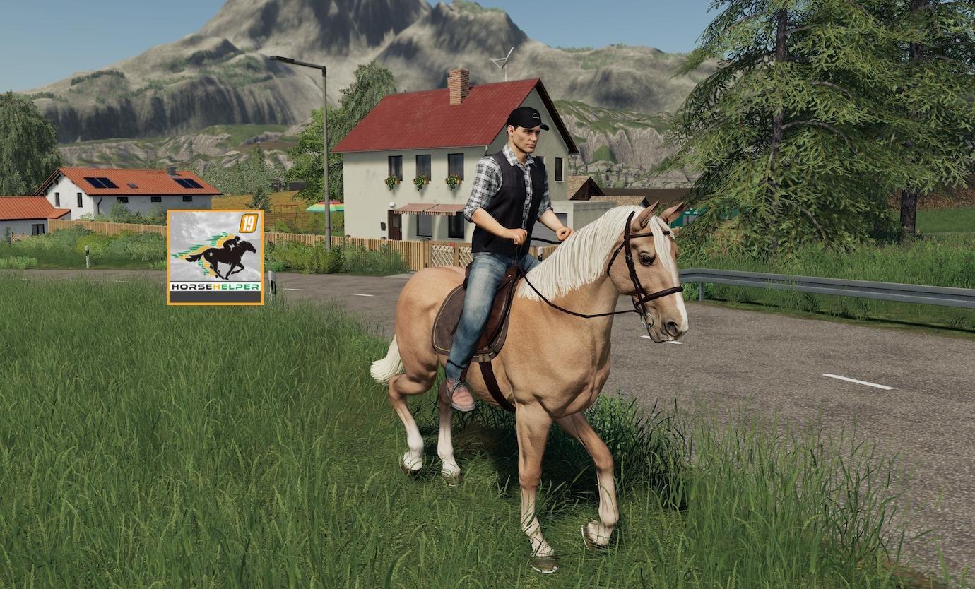 A man on a Horse