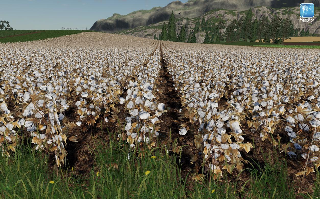 Forgotten Plants - Cotton v 1.0
