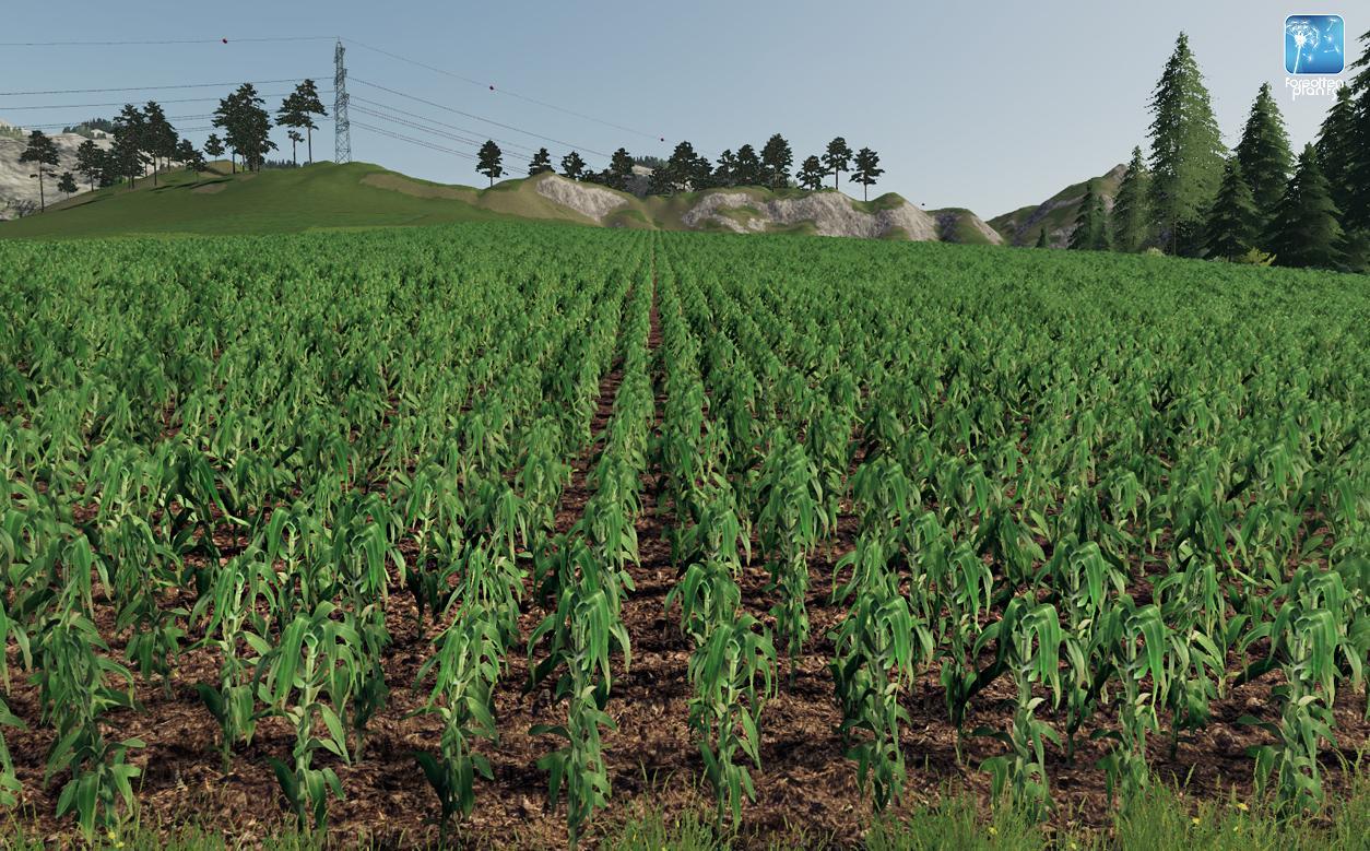 Forgotten Plants - Maize v 1.0