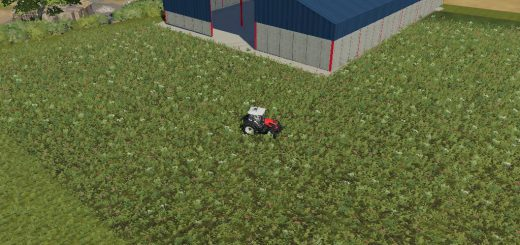 Grain storage shed v 1.0