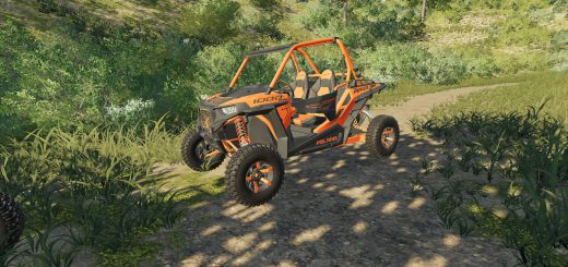 Polaris RZR Two Door v 1.0
