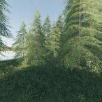 Willamina Forest v 1.0