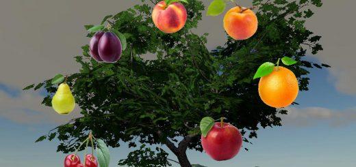 Fruits Trees By BOB51160 v 1.0
