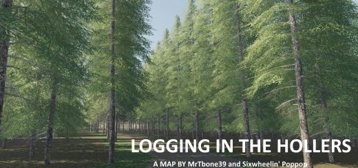 LOGGING IN THE HOLLERS V1.0