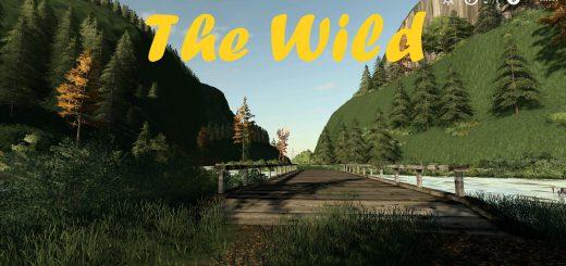 THE WILD V001