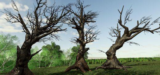 ANCIENT TREE PACK V1.0