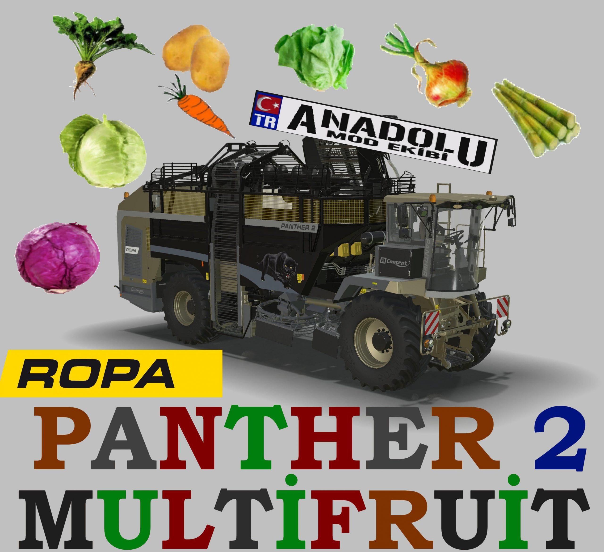 ROPA-PANTHER-2-MULTIFRUIT-V1.0-scaled.jp