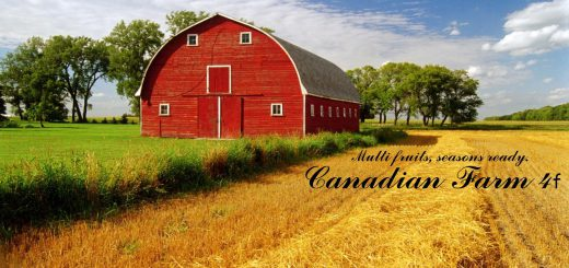 AUTODRIVE COURSES FOR CANADIAN FARM MAP 4F V1.0